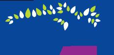 Healthy Aging NC - Logo